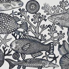 Aquarium gravure
