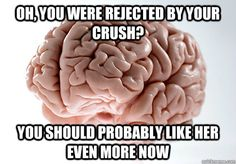oh you were rejected by your crush you should probably lik - Scumbag Brain
