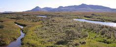 Our next big adventure: backcountry rafting the Goodnews River, Alaska