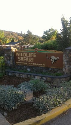 Wildlife Safari - Roseburg, Oregon One of my favorite jobs ever.  Wonderful people worked here, and provided great care and love to the animals.