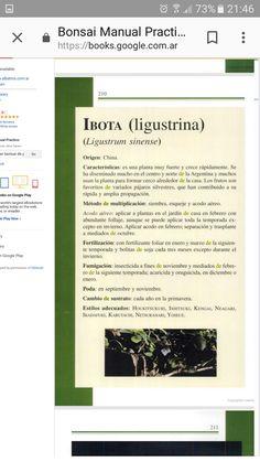 Captura del libro de Hideo Sugimoto. De Google books