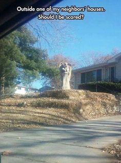Omg don't blink don't look away and whatever you do don't blink don't touch it.