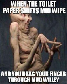 Especially when you have John Wayne toilet paper!!
