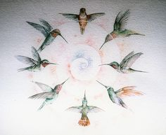 Hummingbirds by Meganne Forbes