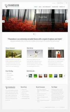 Chameleon WordPress Theme - Elegant Themes