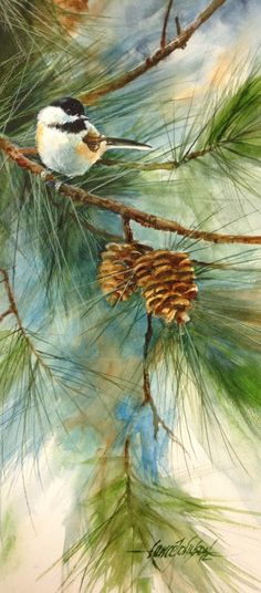 Lance Johnson painting - chickadee on a pine branch with pine cones Watercolor Bird, Art And Illustration, Beautiful Paintings, Painting & Drawing, Art Projects, Art Photography, Art Gallery, Drawings, Photos
