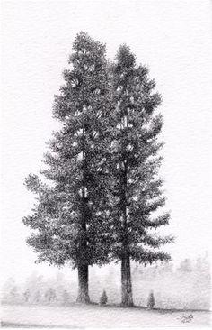 Trees - Original Fine Art for Sale - � by Shweta Mahajan