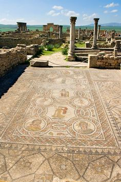 Roman ruins at Volubilis, Morocco Ancient Ruins, Ancient Rome, Ancient History, Roman Architecture, Ancient Architecture, Historical Monuments, Historical Sites, Pompeii Italy, Classical Antiquity