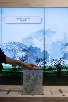 PART physically pulling out botanical information which correlates with the screens Biodiversity garden Interactive Exhibition, Interactive Display, Interactive Media, Exhibition Display, Exhibition Space, Museum Exhibition, Interaktives Design, Display Design, Booth Design