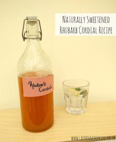 Naturally Sweetened Rhubarb Cordial Recipe - http://www.laurennehopkins.co.uk/naturally-sweetened-rhubarb-cordial-recipe/