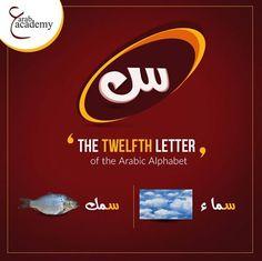 Learn Arabic Online, Arabic Alphabet, Learning Arabic, Lettering, Words, Drawing Letters, Horse, Brush Lettering