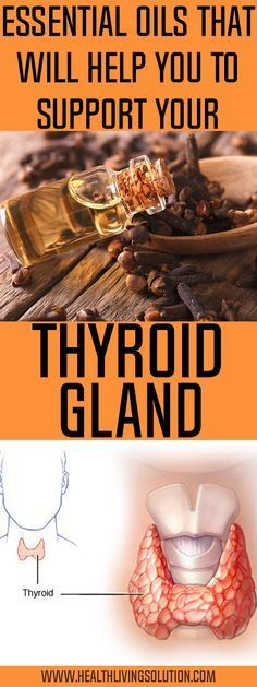 The function of the thyroid gland for the total health is of utmost significance. This butterfly-shaped gland lies in the neck/throat location, above the collar bone.