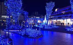 The Christmas lights are beautiful. Terrace mall Syonan - Tsujido Fujisawa iPhone7/Procameera  #terracemall湘南 #tsujido #辻堂 #shonan #湘南 #illumination #japan #instagramjapan #ig_photography #ig_japan #instadiary #shotoniPhone #shotoniPhone7 #ink361_mobile #iphonephotography #streetphotography #igersjp #mwjp #team_jp_ #indies_gram #ink361_asia #reco_ig #スマホ写真部 #写真好きな人と繋がりたい #写真撮ってる人と繋がりたい #東京カメラ部 #tokyocameraclub