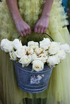 Pail of pale white roses