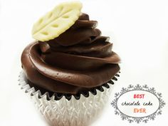 Best Eggless chocolate cake /cupcakes   carve your craving
