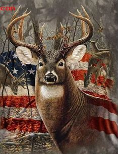 Diamond Painting Kits for Adults Full Drill- Diamond Art Kits for Beginners and Students with Adults' Paint-by-Number Kits for Wall Decoration, Gift, Relax (Flag Deer) Whitetail Deer Pictures, Deer Photos, Deer Pics, Hunting Art, Turkey Hunting, Hunting Painting, Deer Hunting Humor, Diy Painting, Hunting Wallpaper