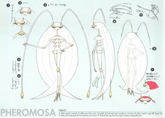 Ultra beasts concept art for Pokémon sun and moon