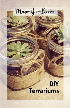 Terrarium crafts are great for homemade gifts, garden starters or DIY decor for Fathers Day.