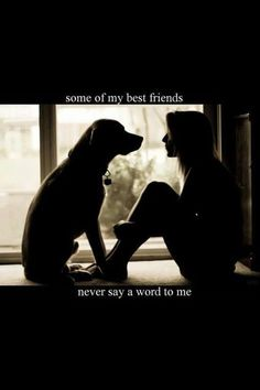 Funny Labrador Dog Quotes And Sayings I Love Dogs, Puppy Love, Cute Dogs, Dog Smile, Mans Best Friend, Best Friends, Animals And Pets, Cute Animals, Animal Quotes