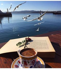 Fotoğraf;  @sarigulbuse mavi, martı, kitap ve kahve ..Huzur kahvesi