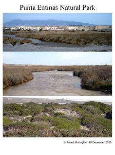 Punta Entinas Natural Park (Almería) - 10 December 2010 - a walk in the natural park