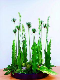 Modern Floral Arrangements, Creative Flower Arrangements, Flower Arrangement Designs, Ikebana Flower Arrangement, Ikebana Arrangements, Flower Designs, Altar Flowers, Church Flowers, Flower Bouquet Boxes