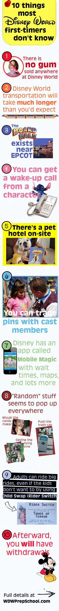 ESPECIALLY #10-- 10 things most Disney World first-timers don't know. More info at WDWPrepSchool.com