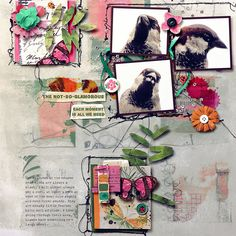 Scrapbooking Layouts, Digital Scrapbooking, Team Page, Digital Art, Gallery Wall, Invitations, In This Moment, Creative, Projects