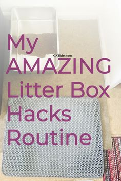 Frustrated that the litter box area never stays clean? My litter box hacks will solve your problem! Many people underestimate the importance of a clean litter box. Cats are clean creatures that prefer and deserve a clean litter box area. It isn't that difficult to keep it clean! Remember the more you scoop, the easier it is to clean the box. Check out my 10 min a week litter box cleaning routine today! Best Cat Litter, Litter Box, How To Cat, Living With Cats, Cat Hacks, Cat Sitter, Cat Care Tips, Organization Hacks, Keep It Cleaner