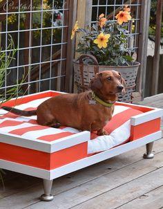 modern pet bed striped cushion