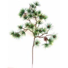 Větev bonsaj