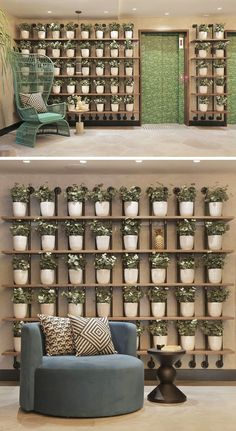 WALL DECOR IDEA - Create A Grid Of Planters On A Shelving Unit For A…