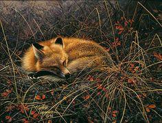 Stephen Lyman - Fox Dreams (http://www.hiddenridgegallery.com/store/stephen-lyman/fox-dreams.html)