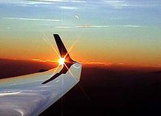 winglet in sunset