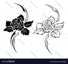 Two Monochrome Roses Vector Image by Blackmoon9