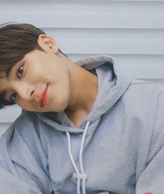 """민규🌼DANDELION 민들레 on Twitter: """"오늘 무슨날이니ㅠㅠㅠㅠㅠㅠㅠㅠㅠ민규 미모 무슨일이니ㅠㅠㅠㅠㅠㅠ심장 부서짐ㅠㅠㅠㅠㅠ… """" Mingyu Wonwoo, Seungkwan, Woozi, Mingyu Seventeen, Seventeen Debut, Kpop, Kim Min Gyu, Vernon Hansol, Seventeen Wallpapers"""