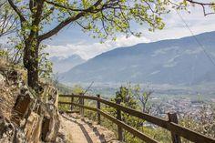 Naturnser Waalweg Südtirol - Waalweg mit Aussicht