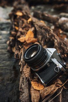 "stayfr-sh: "" Pentax In The Wild "" Camera Wallpaper, Bear Wallpaper, Fall Wallpaper, Camping Photography, Camera Photography, My Love Photo, Camera Sketches, Diy Pinterest, Pentax Camera"