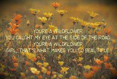 Dean Brody Wildflower <3