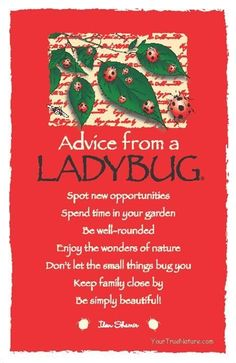 Spend time in your garden! Enjoy the wonders of nature. Delightful advice from a Ladybug! Animal Spirit Guides, Spirit Animal, The Words, Advice Quotes, Me Quotes, Affirmations, Nature Quotes, Good Advice, In This World