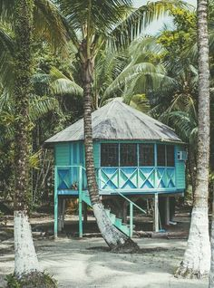 beach huts + cocoanuts Exactly where we want to be