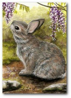 Cottontail Rabbit ArT Bunny Nature Wildlife Wonder Wisteria - BiHrLe Print in Art, Direct from the Artist, Prints Rabbit Drawing, Rabbit Art, Animal Paintings, Animal Drawings, Art Drawings, Bunny Painting, Painting & Drawing, Bunny Art, Cute Bunny