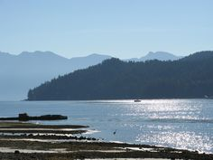 Gibsons Sunshine Coast Bc, Vancouver Island, Home And Away, British Columbia, West Coast, The Good Place, Photo Galleries, Charlotte, Hiking