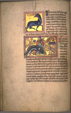 The Aberdeen Bestiary has been scanned and put online with both transcription and translation.