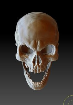 wicked skull pictures | Evil Skull by juliangibson on deviantART