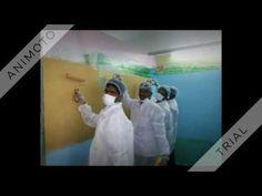 Wall Master Deziners painters training