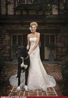 ¿Te vas a olvidar de tu #mascota el día de la #boda? #mascotasenbodas, yes of course!