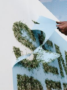 """Go Green with Grass Graffiti. A great way to add a natural touch to your booth. Featured at the Urban Art Festival, the statement """"semilla pero no se toca"""" talks about the preservation of nature."""