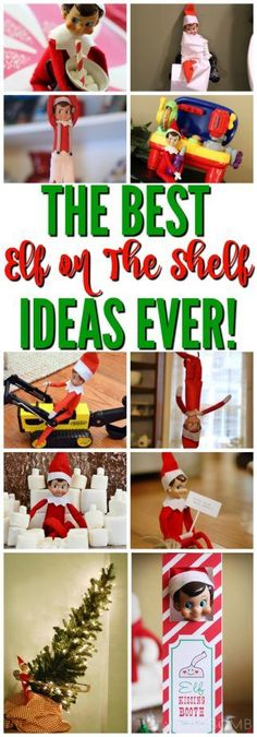 Easy and quick to do Elf on the Shelf Ideas! These pretty fun ideas are a month's worth of Easy Elf on the Shelf ideas! Make the holiday season more exciting with these elves! Christmas Elf, All Things Christmas, Christmas Crafts, Christmas Decorations, Christmas Ideas, Christmas Thoughts, Christmas Scenes, Christmas Christmas, Simple Christmas