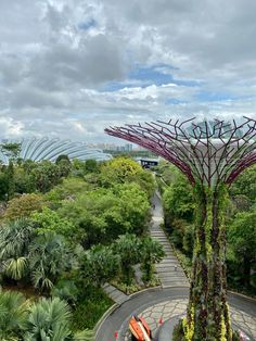 The Cloud Forest, Singapore